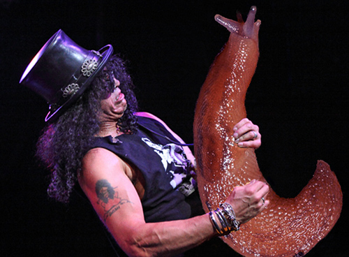 Slash performs at the House of Blues on September 15, 2010 in Boston, Massachusetts.